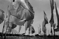 circus_field_flags